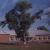 Муниципальное общеобразовательное учреждение Колодезянская средняя общеобразовательная школа