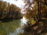 Алтай. Река Алей