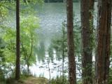 Тропа к озеру