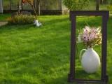 Люблю украшать свой сад