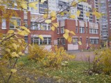 ГДОУ №45 - Санкт-Петербург, Санкт-Петербург