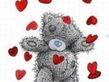 TEDDY BEAR!