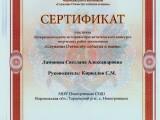 Сертификат участника Межрегионального историко-просветительского конкурса творческих работ школьников.