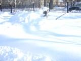 Во дворе школы 23.02.2010
