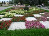Площадь с цветами