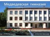 МЕДВЕДЕВСКАЯ ГИМНАЗИЯ - Медведево, Республика Марий Эл