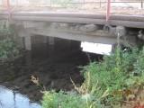 Самый старый мост Ерсубайкино