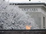 Пискарёвское кладбище, январь