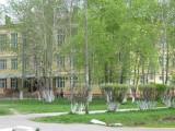 Муниципальное образовательное учреждение средняя общеобразовательная школа № 25 - Свободный, Свердловская область