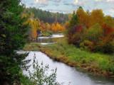 осень в Михайловске