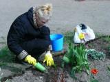 Наш главный садовод Марина Сергеевна