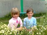 Мы с Валюшкой - две подружки! Шли ромашки собирать!