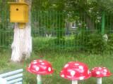 По грибочки во лесок