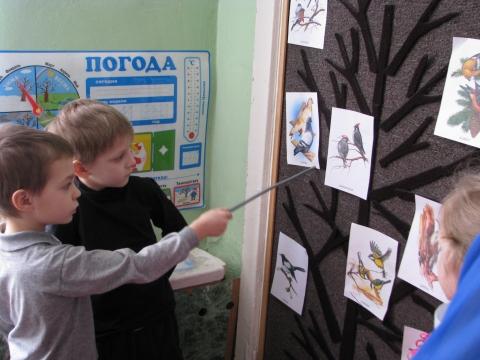 изучаем зимующих птиц - Татьяна Сергеевна Азарова