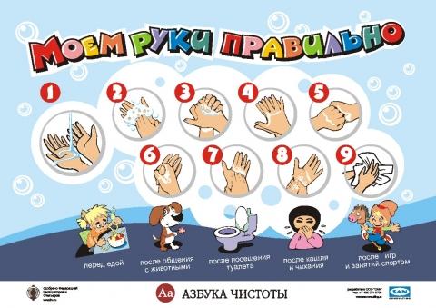 Для предупреждения кишечных заболеваний важно соблюдать правила личной гигиены: мыть руки перед едой...