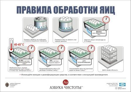 инструкция мойки яиц