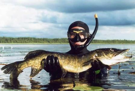 Подводная охота - Отдыхаю!!!