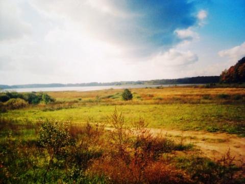 Щетинина Полина 2 - Средняя школа № 23 с углублённым изучением финского языка