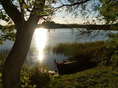 Ухарцева Виктория 11 класс - Средняя школа № 23 с углублённым изучением финского языка