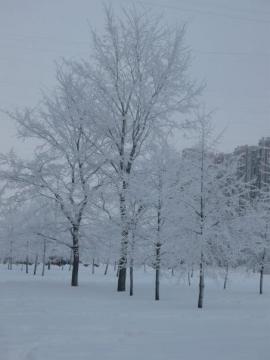 Зимний день - Александра Николаевна Литвинова