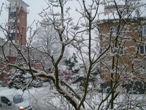 Vjezde snjeg.. - Vera Antonovna Juritchkova