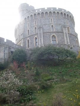 в этом замке королева Англии проживает большую часть года - Людмила Александровна Чупина