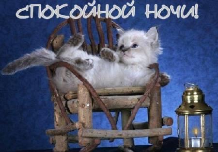 Спокойной ночи! - Елена Владимировна Новикова