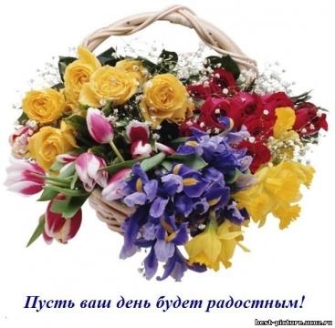 Счастливого дня - Елена Владимировна Новикова