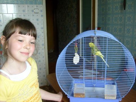 мой попугай - Анастасия Вячеславна Демидова