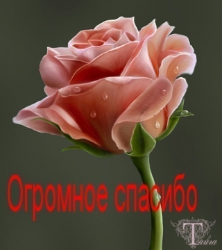 Большое спасибо! - Елена Владимировна Новикова