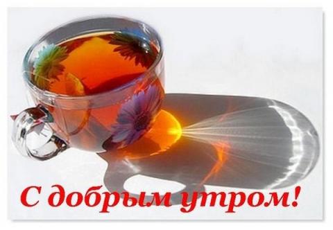 Без названия - Зоя Владимировна Лысенко