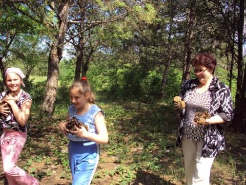 ШИШКОВИКИ - Светлана Витальевна Фирсова