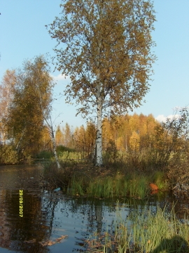 Разливы осенью - Фото клуб