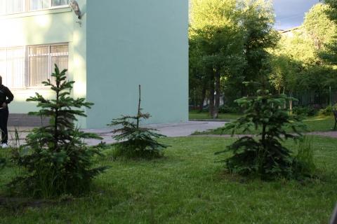 Хоровод - ГБДОУ детский сад №86 Невского района Санкт - Петербурга