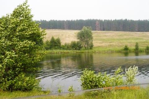 Вид на озеро из окна машины - Отдыхаю!!!