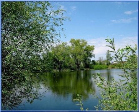 озеро Черное - Наталья Николаевна Глебова