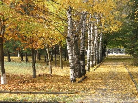 Осень , рыжая подружка - Наталья Викторовна Слеткова