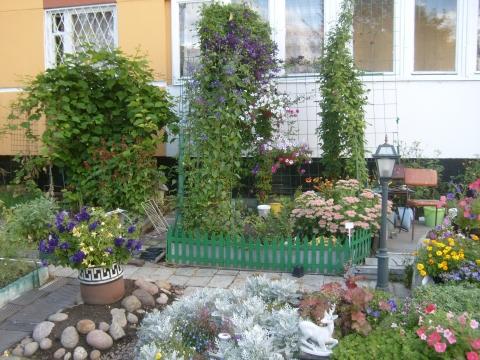 Наш двор - Людмила Александровна Чупина