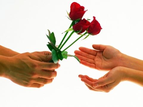 Красные розы - Юлия Анатольевна Акмазикова