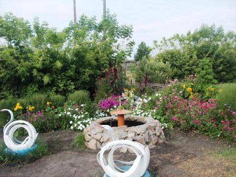 фонтан и лебеди украшают зону отдыха - Светлана Ивановна Рябушева