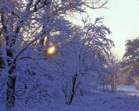 http://img3.proshkolu.ru/content/media/pic/std/1000000/603000/602253-50d3d0f4d523a92c.jpg