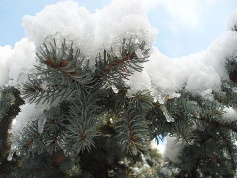 Облачный снег - Фото сообщество