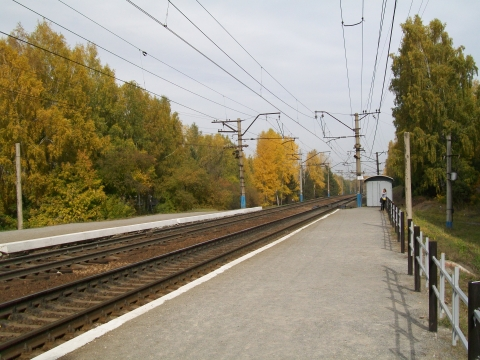 Осень - Галина Юрьевна Щербак
