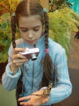 Бабочка - Фото сообщество