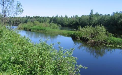 Река андога моу андогская средняя