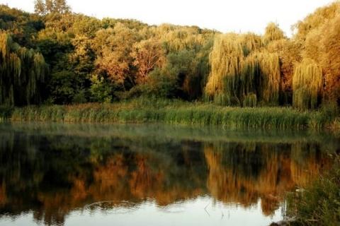 Осень - Александр Николаевич Комлев
