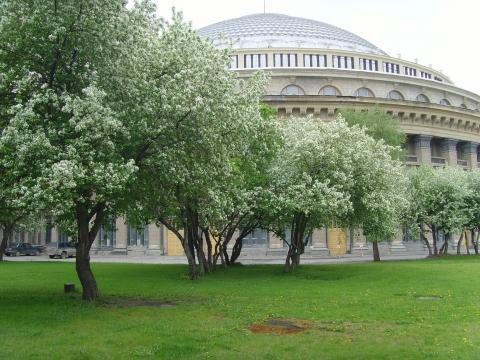 Театр Оперы  и Балета (Новосибирск) - Здесь мой дом!!!
