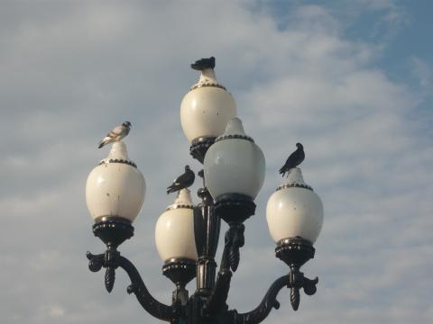 Необычный ялтинский фонарь! - Александра Николаевна Литвинова