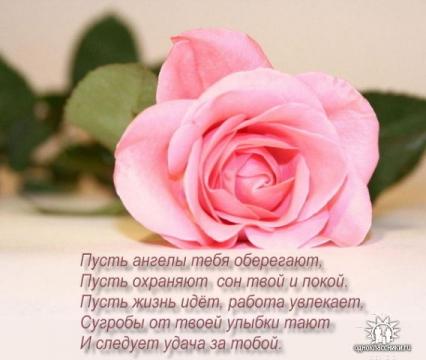 Роза с пожеланием