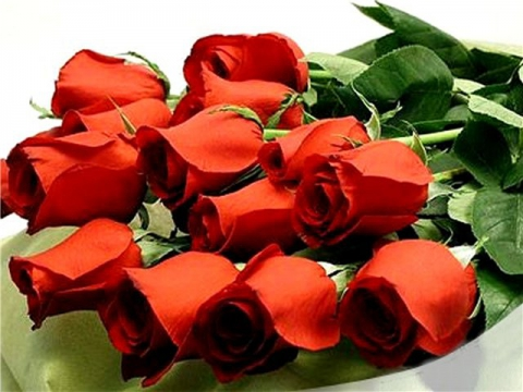 Букет красных роз!